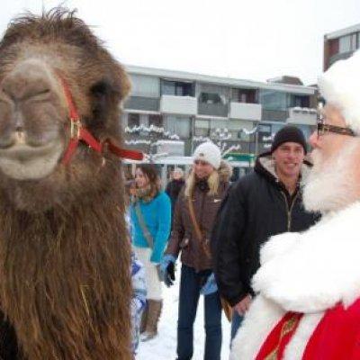 Fotoalbum van Rondlopende Kerstman met Kerstkransjes | Attractiepret.nl