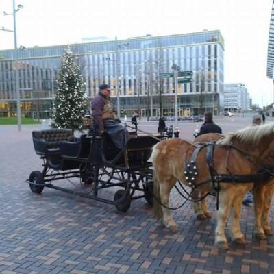 Foto van Rondrijdende Arrenslee - met Kerstman | Sint en Kerst