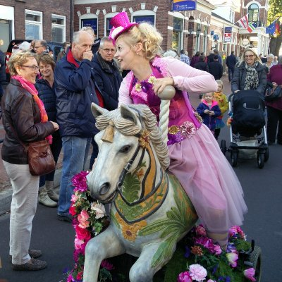 Foto van Het Kermispaardje | Attractiepret.nl