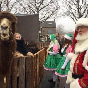 Foto van Levende Kerststal met echte kameel   SintenKerst