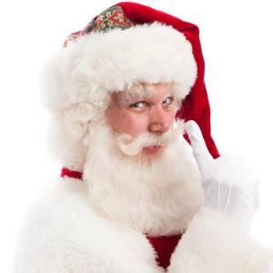 Kerstman - De enige echte boeken?