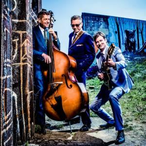 De Muzikale Gasten - Trio boeken?