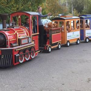 De Elektrische Kindertrein met Locomotief boeken