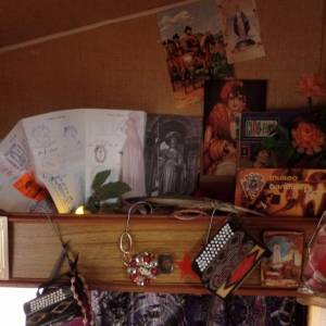 Zigeunerbloed boeken of inhuren?