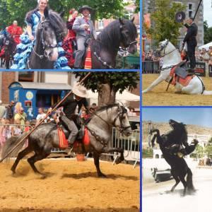 Spaanse Andalusische Paardenshow boeken