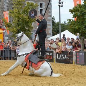 Spaanse Andalusische Paardenshow inzetten