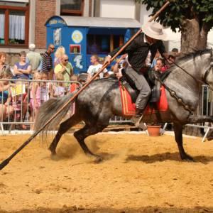 Spaanse Andalusische Paardenshow boeken of inhuren