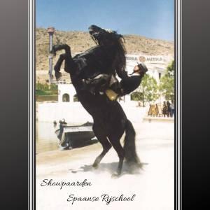 Paardenshow Spaans Andalusisch - inhuren