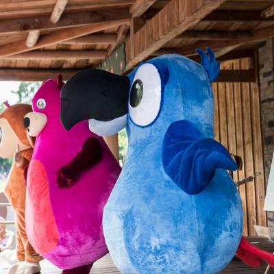 Foto van Meet & Greet StoryZoo | Looppop.nl