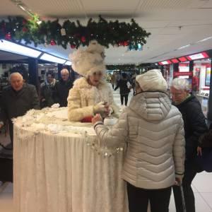 The Snow Queen boeken of inhuren?