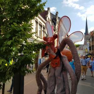 Reuzeninsecten - Insectara inzetten?