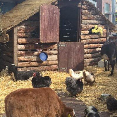 Paasboerderij huren of boeken