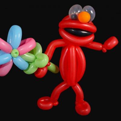 Martijn de Ballonnenman boeken?