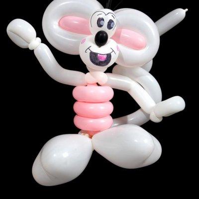 Martijn de Ballonnenman inhuren?