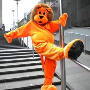 Oranje Leeuw Meet & Greet inhuren