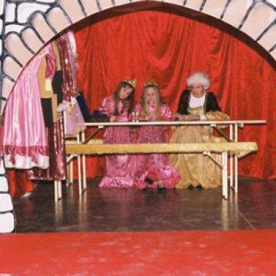 Foto van Prinsen en Prinsessendag   Artiestenbureau JB Productions