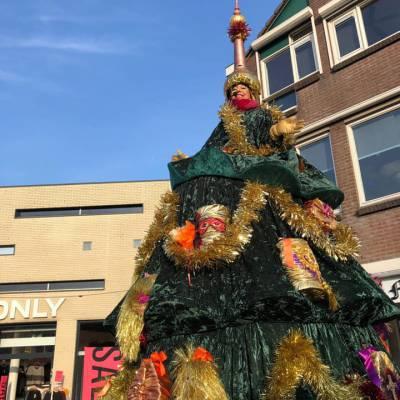 Foto van Zingende Kerstboom | Artiestenbureau SintenKerst.nl
