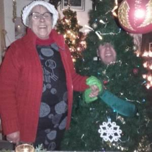 De Wandelende Kerstboom boeken of inhuren?
