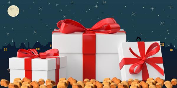 Dit zijn 5 leuke Sinterklaas cadeautjes tot 15 euro